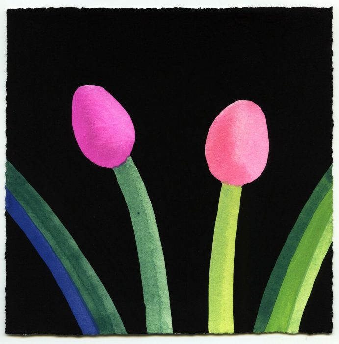 Two Pink Tulips with Radiating Leaves