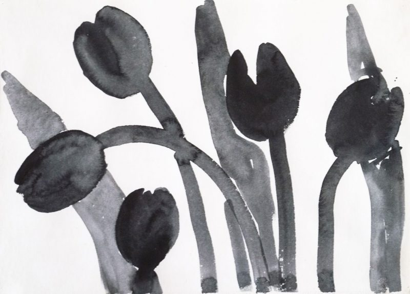 Five Swaying Tulips in Black
