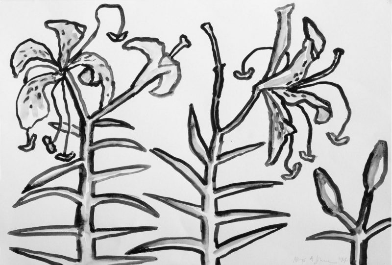 Dying Lilies and Buds