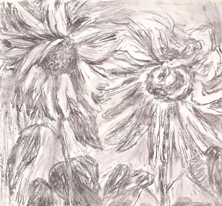 Two Sunflowers I