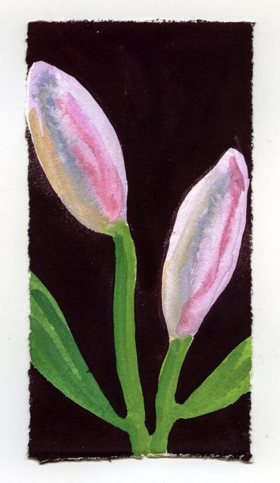Pink Lily Buds on Chocolate Red Ground